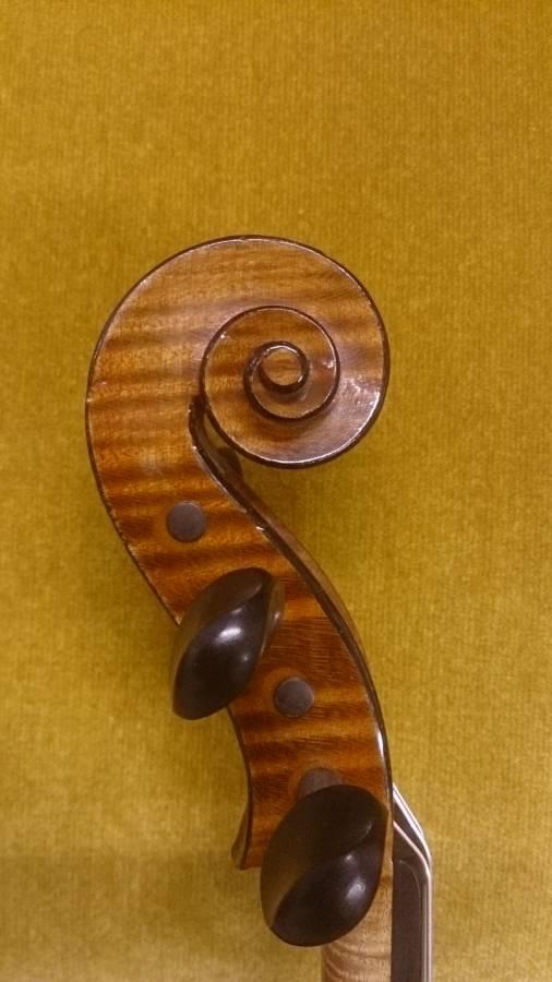 バイオリン 新入荷!