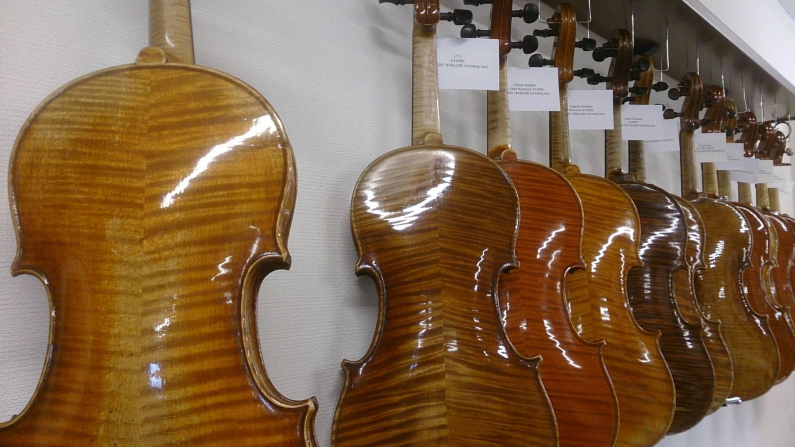 バイオリン新入荷