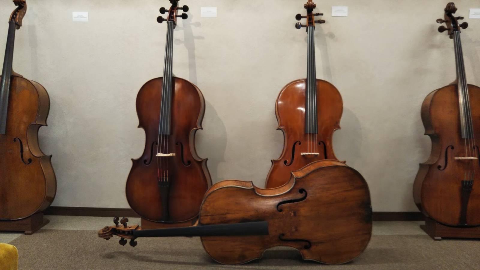 秋のバイオリン、チェロのご案内と新入荷